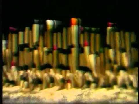 kispal-es-a-borz-agy-asztal-tvkotezelo-videok-part-2-ferenc-balogh