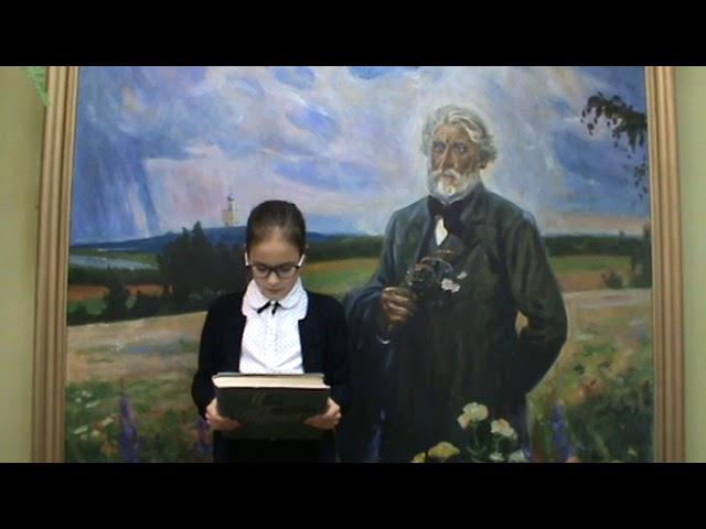 Изображение предпросмотра прочтения – МарияАгошкова читает произведение «Стихотворения в прозе. Воробей.» И.С.Тургенева