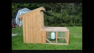 Backyard Chickens, Chicken Tractor Chicken Coop