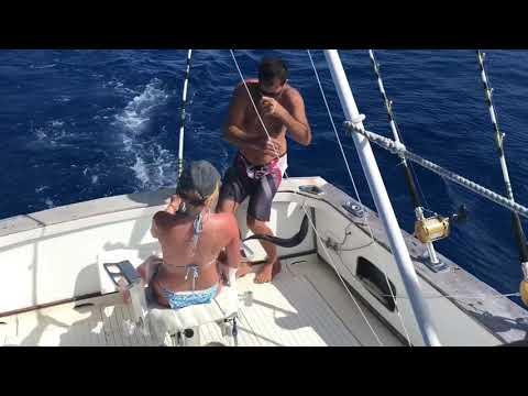 Deep Sea Fishing Dec 2018 Tahiti