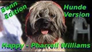Pharrell Williams - Happy | Dogs Version (Bonn Edition)
