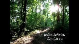 Psalm 139 Greg Long - I cannot hide from you (German Lyrics/Deutsche Übersetzung)
