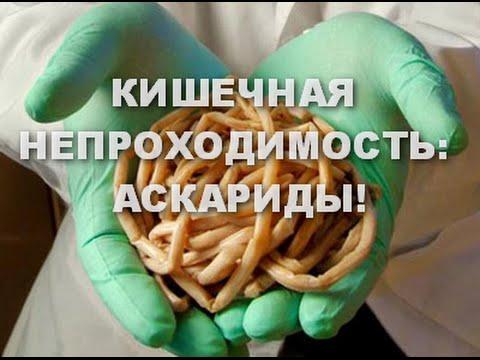средство паразитов внутри человека
