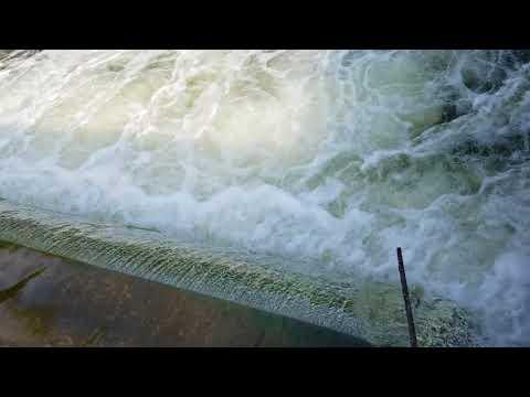 Salmon Run on the Betsie River, at the Homestead Dam in Benzonia,  MI
