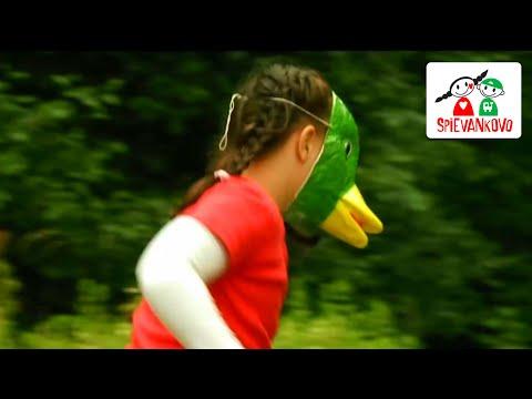Pláva kačka - SPIEVANKOVO 1