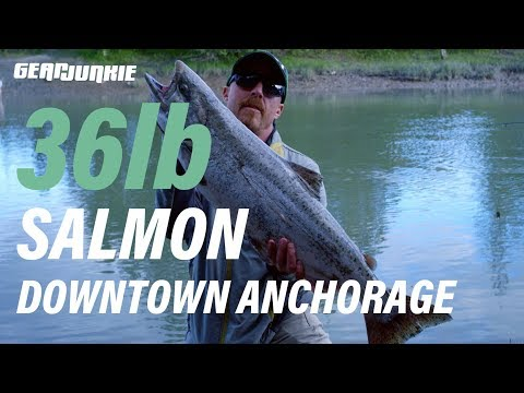 Catching A 36lb Salmon In Downtown Anchorage [Urban Fishing]