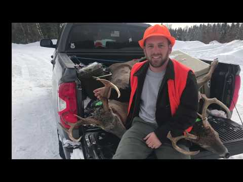 Northern Maine Whitetail Deer Hunt - 2018