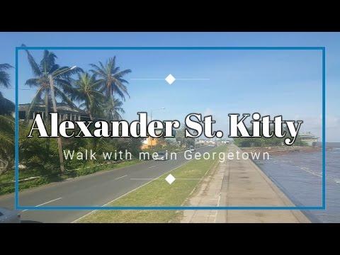 Walk with me on Alexander Street Kitty, Georgetown