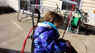 New Horse Tire Swing Is A Big Hit