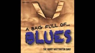 The Buddy  Whittington   Black Cat Bone  Wilson / Semian