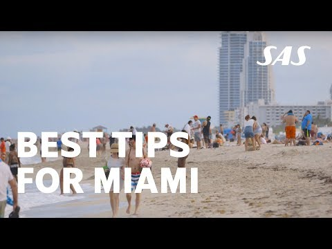 Miami City Guide: Amazing restaurants, sandy beaches and cool outdoor activities – visit Miami | SAS