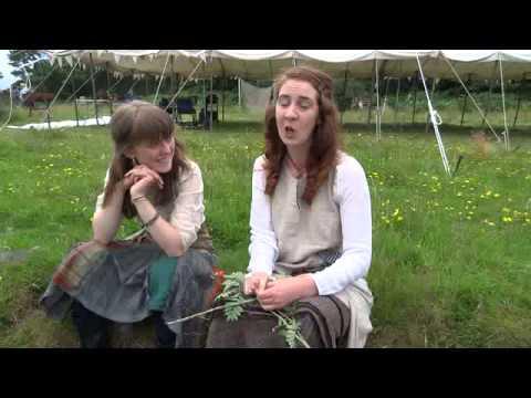 Thrush song in Gaelic