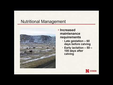 Nutritional Management to Prepare for the Breeding Season - Ranching for Profitability 2018