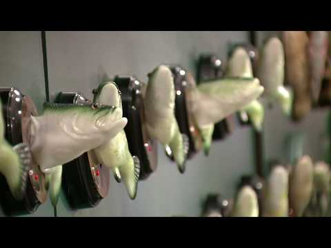 75 Big Mouth Billy Bass Fish Sing Bee Gees' 'Stayin Alive,' Talking Heads' 'Once In A Lifetime'