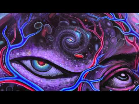DMT, Mathematical Dimensions, Language, Memes and Death (Terence Mckenna)