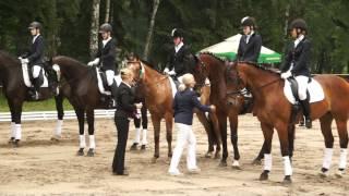 20120622 Białka Konie Dekoracja cz1