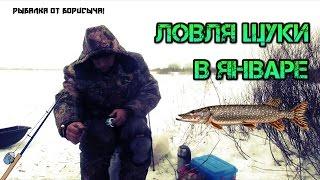 Рыбалка от Борисыча! Ловля щуки в Январе.
