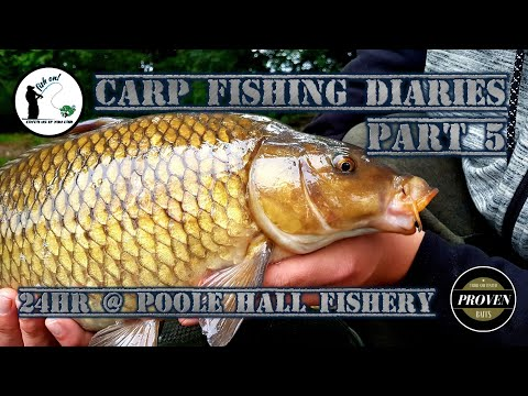Carp Fishing Diaries Part Five 24hrs At Poole Hall Fisheries