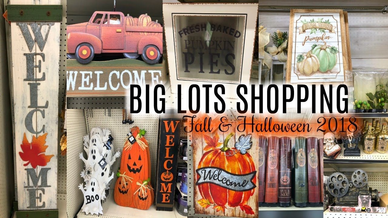 SHOP WITH ME BIG LOTS