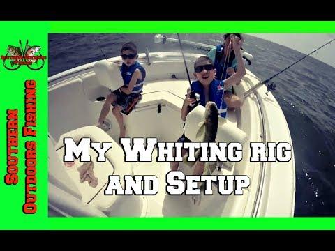 Whiting Fishing Rig And Setup