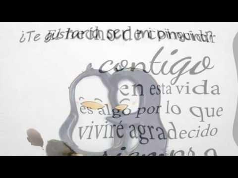 Bonitas Frases De Amor Para Conquistar A Tu Amigo Amiga Novio Novia