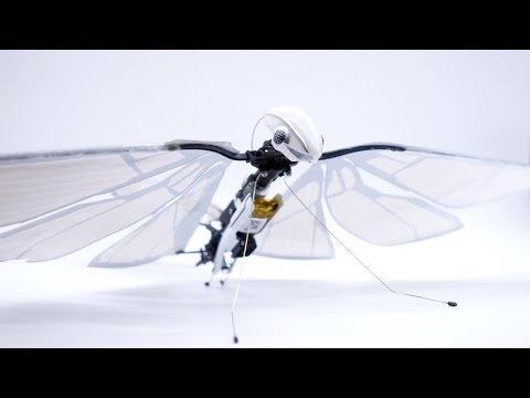 MetaFly - flying robot butterfly