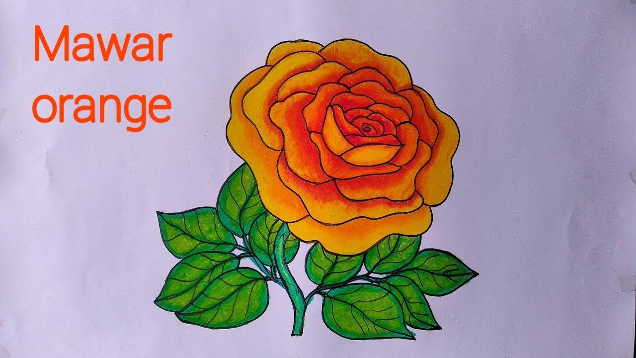 Cara Menggambar Bunga Mawar Yang Bagus Mewarnai Dengan Gradasi