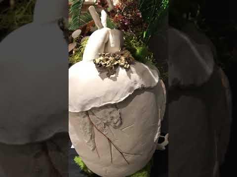 Cretaceous Heart
