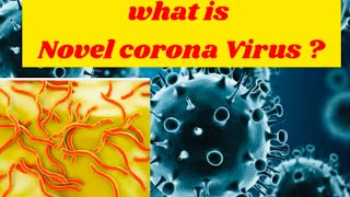Wht is Novel Corona Virus ?? Detailed Explanation !!!