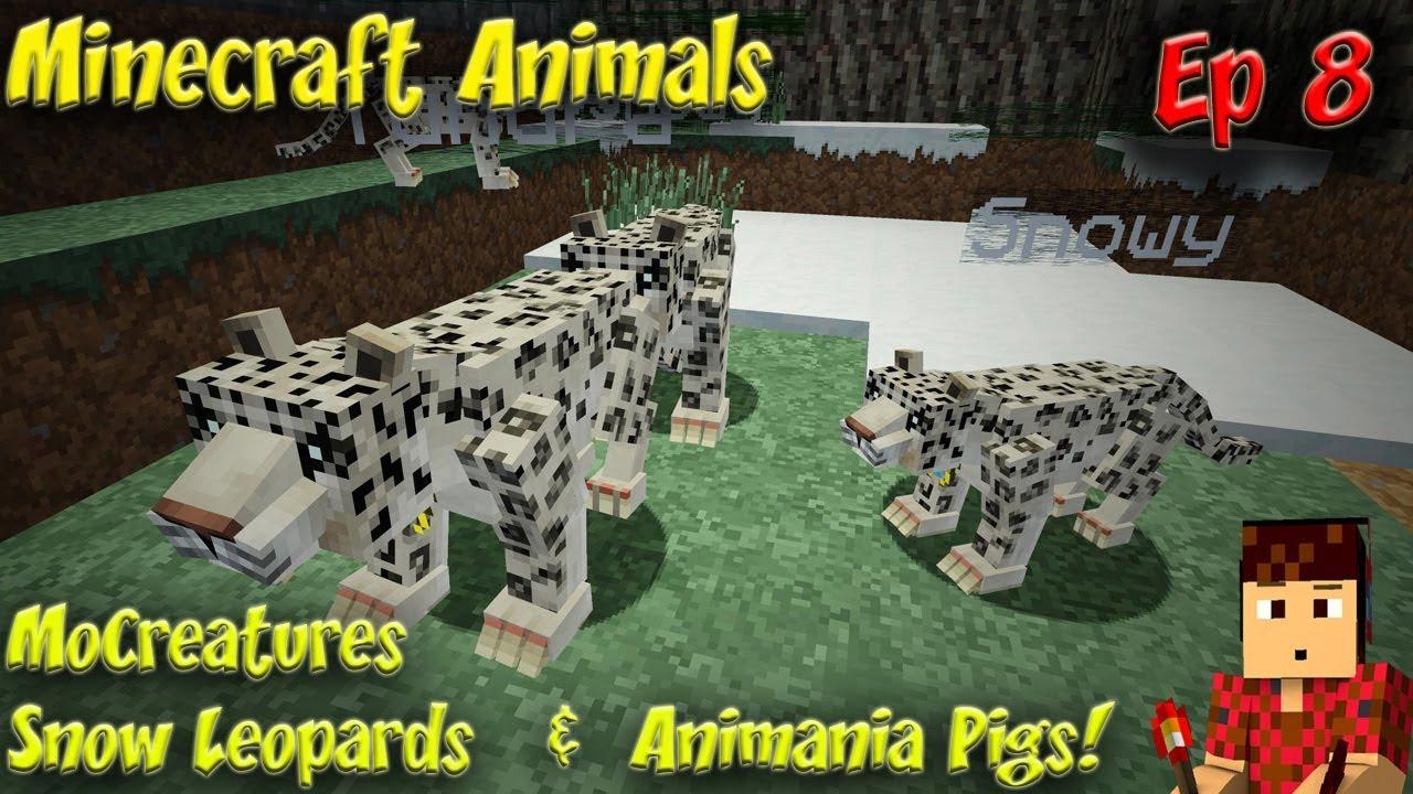 Minecraft Animals Ep8 MoCreatures Snow Leopards Animania Pigs