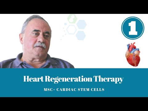 One Year After Heart Regeneration Therapy with Cardiac Stem Cells Long Term Results 2018