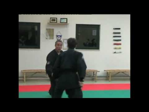 cosa è il jujitsu (Parte 1)