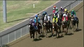 Vidéo de la course PMU MAIDEN PLATE R84
