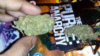 English Amnesia Haze Review / Smoke Report Uk...