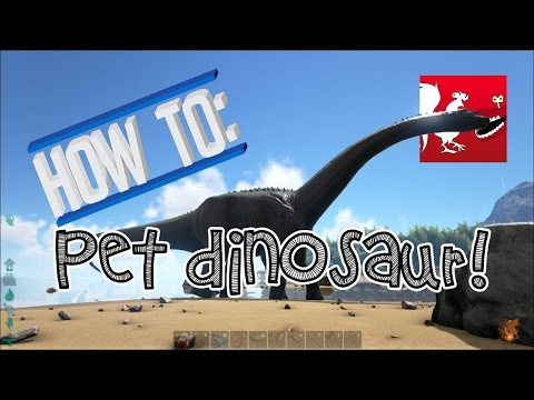 How To: Pet Dinosaur | Rooster Teeth