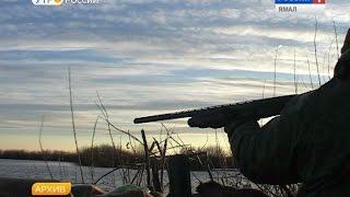 Расчехляем ружья, и за добычей. Завтра на Ямале открывается сезон осенней охоты(, 2015-08-07T06:21:03.000Z)