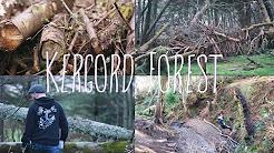Exploring Kergord Forest   Shetland   Kamikaze~Katy