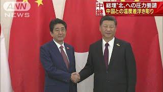 日中首脳会談 安倍総理、北朝鮮への圧力を要請(17/07/08)