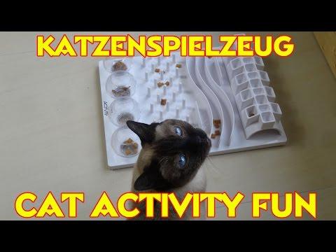 """""""KATZENSPIELZEUG CAT ACTIVITY FUN"""" -Katz mag es oder Katz mag es nicht"""