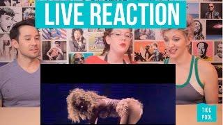 beyonces best live dance breakdowns reaction