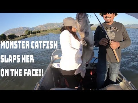 Utah Lake: Summer Catfishing With Cut Bait. How To Catch Summer Catfish
