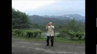 Cheng Man-Ch'ing Taijiquan - Short Form - Grandmaster Lin Feng-Chao