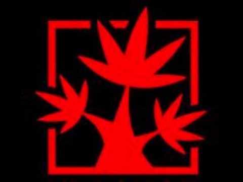 Клип Красное Дерево - Химические Формулы