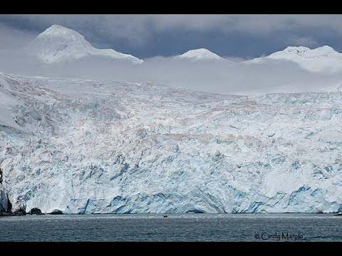 Antarctica: Elephant Island