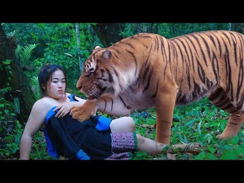 Download the girl needs her tiger help xia xav tau tus tsov pab