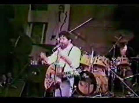 Raul Seixas - Rock Das Aranhas