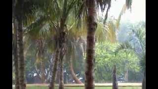 видео Туры на Кубу в августе 2013