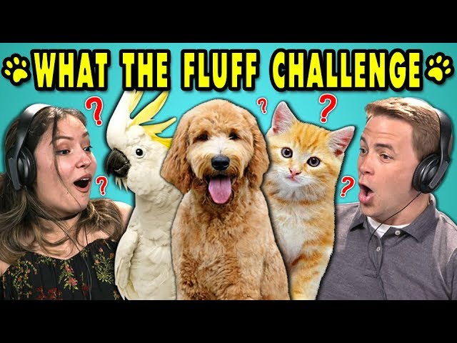 adults-react-to-what-the-fluff-challenge-whatthefluffchallenge