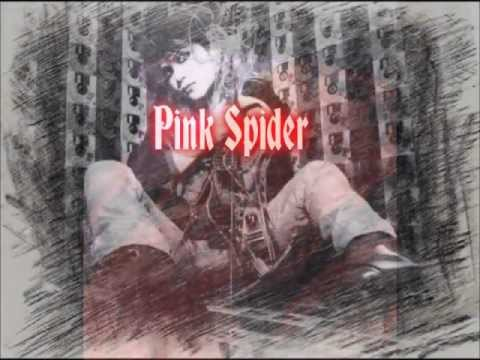 Hide - Pink Spider (lyrics)