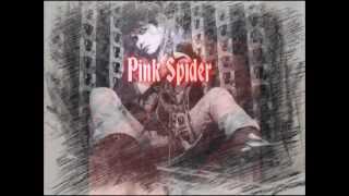 Hide - Pink Spider (lyrics)